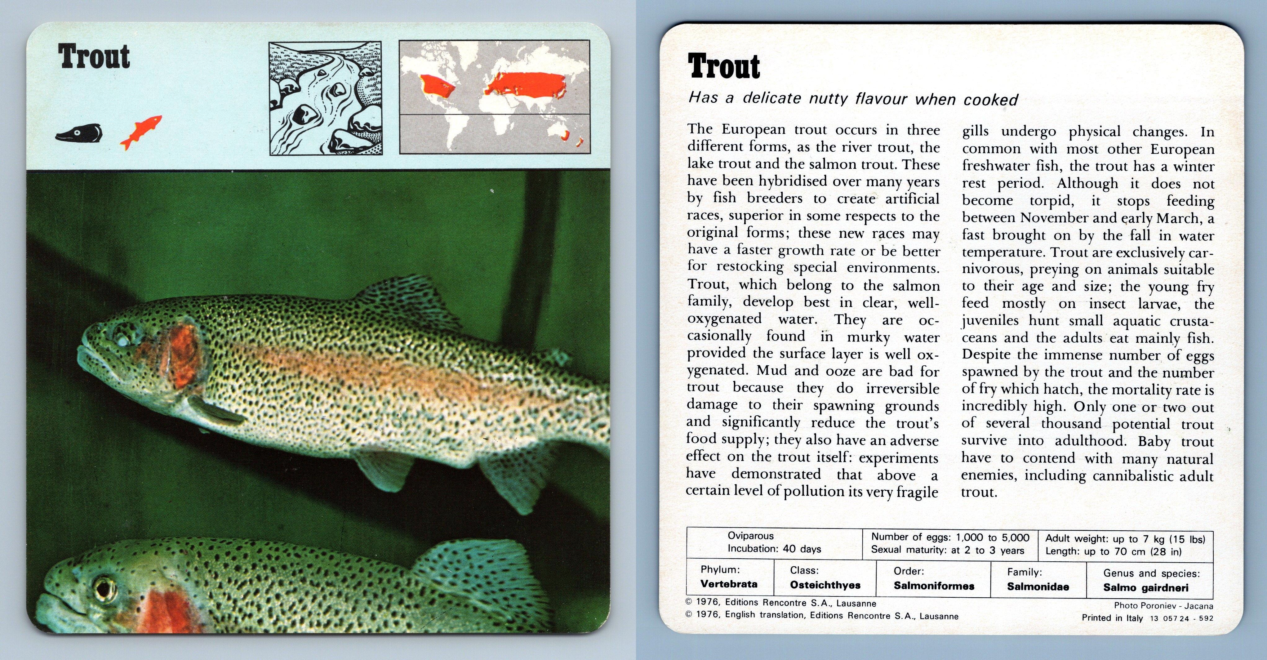 Tester l'application Plenty Of Fish