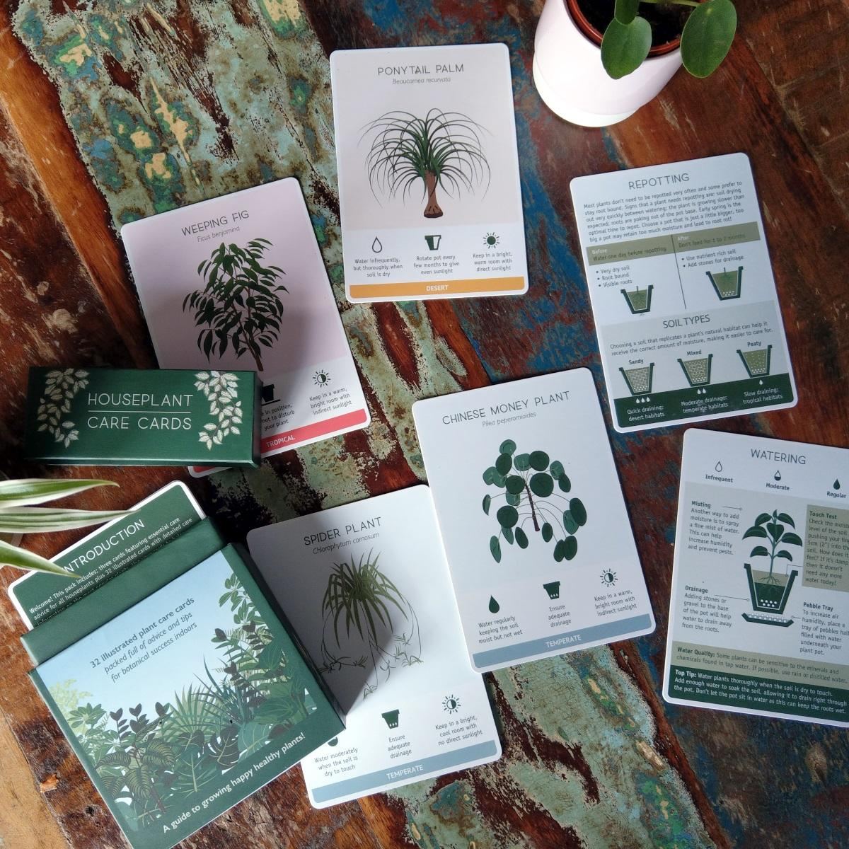 Miraculous Houseplant Care Cards Interior Design Ideas Clesiryabchikinfo