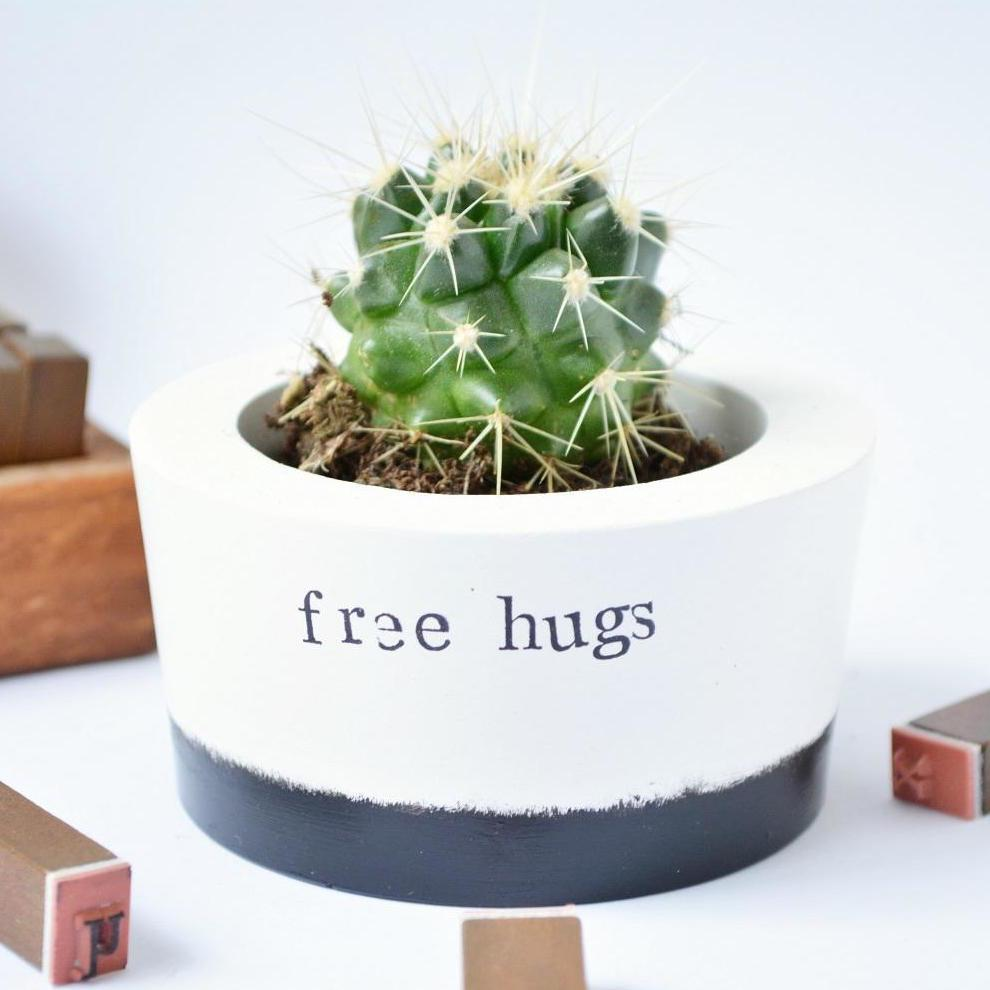 Free Hugs Ceramic Pot Cactus Gift Novelty Gift