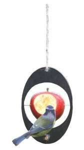 Black oval shaped hanging bird feeder with wooden perch