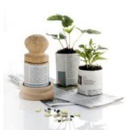 Large wooden paper potter with two newspaper pots containing plants.