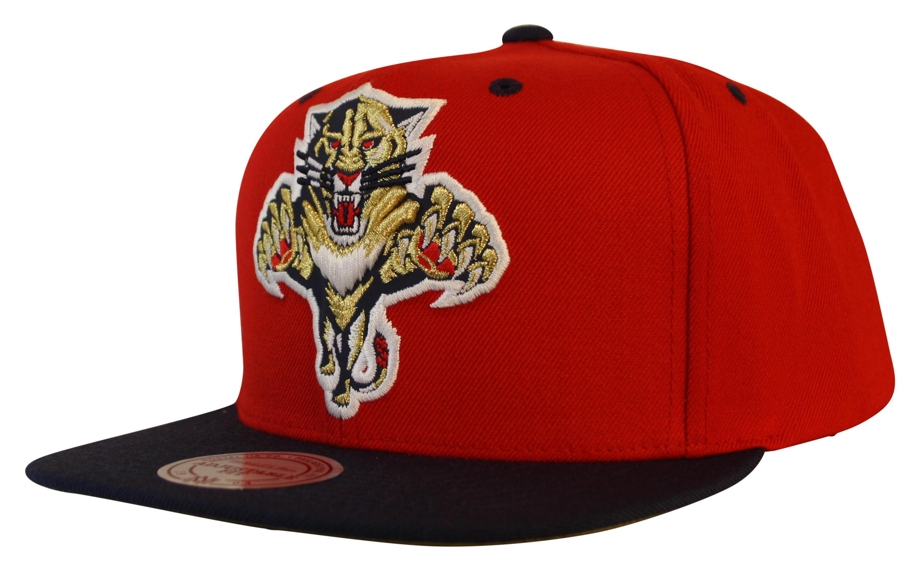 5189825578b Mitchell   Ness Florida Panthers Reflective XL Logo Snapback