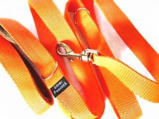 Orange webbing multiway lead