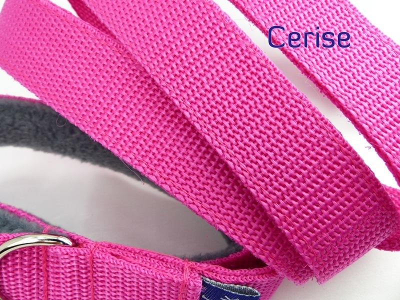 Cerise webbing long lead