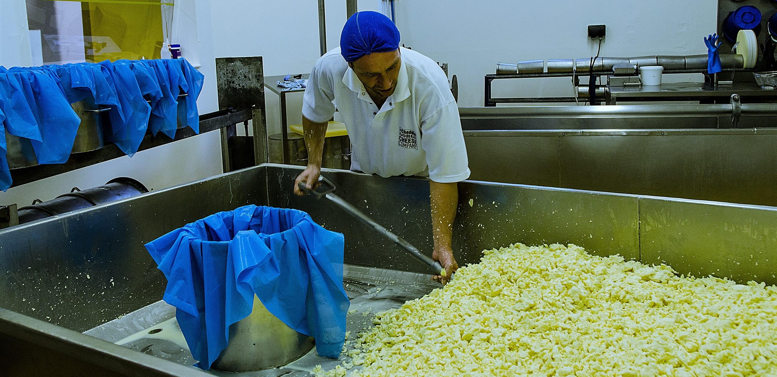 Visit to watch us make traditional cheddar cheese