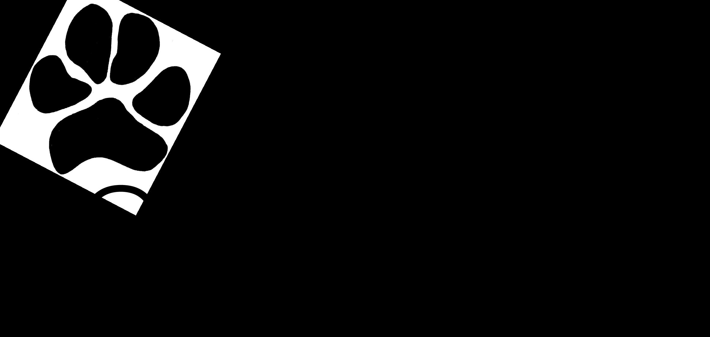 cosmetic conscience by caroline henry logo