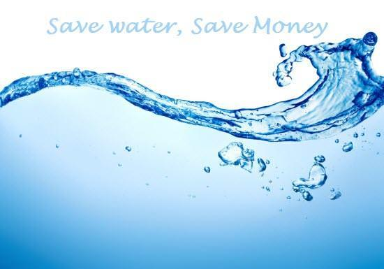 Save Water (and Money) with These Simple Eco-  Friendly Tips