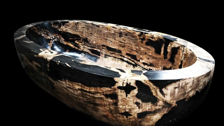 "The 180-million-year-old ""Petrified Wood"" Bath"