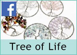 Tree of Life - 14th December
