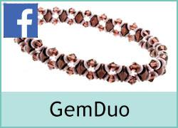 GemDuo Elastic - 4th April