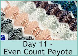 Day 11 - Even Count Peyote