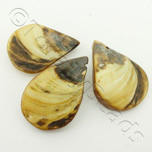 Shell Drop 25mm - Brown