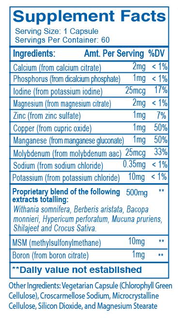 oayush-herbs-label-ayudep.png