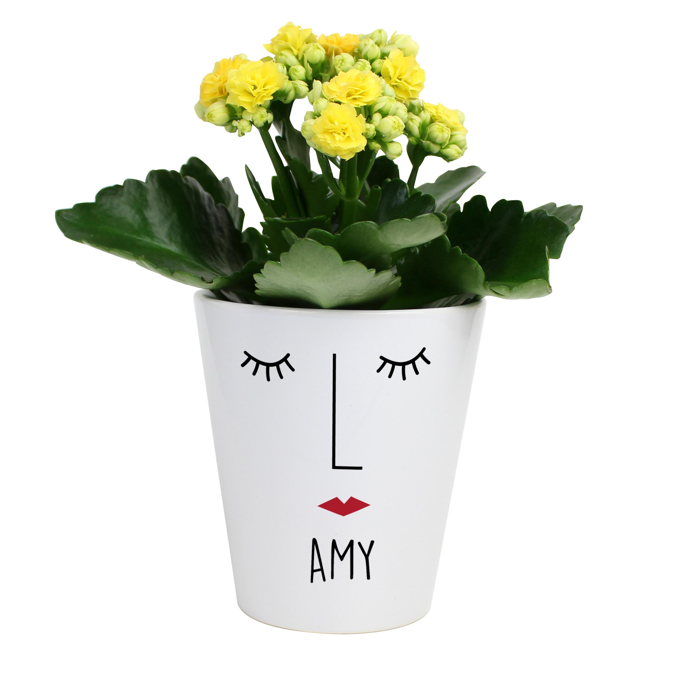 Mrs Face Personalised Plant Pot