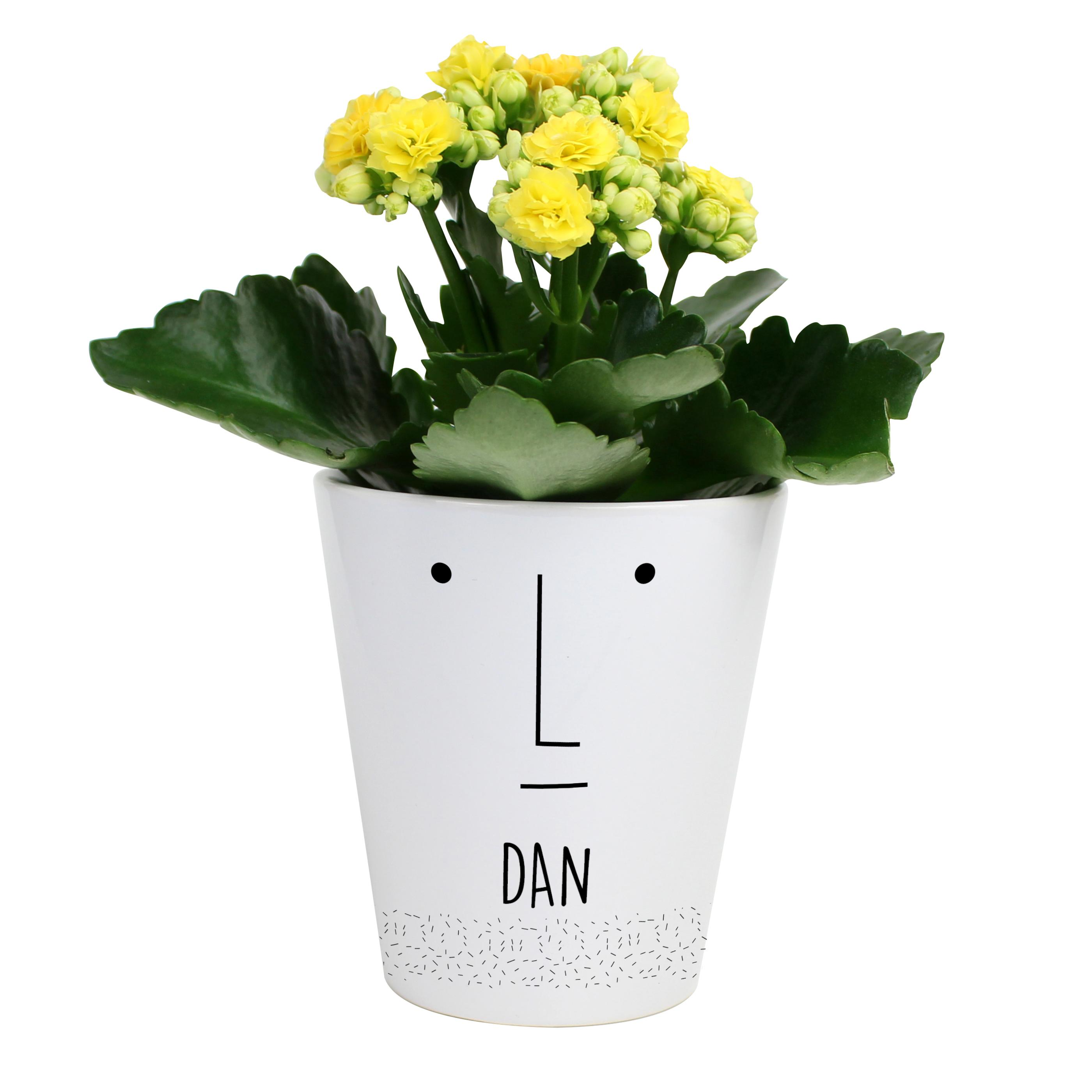 Mr Face personalised plant pot