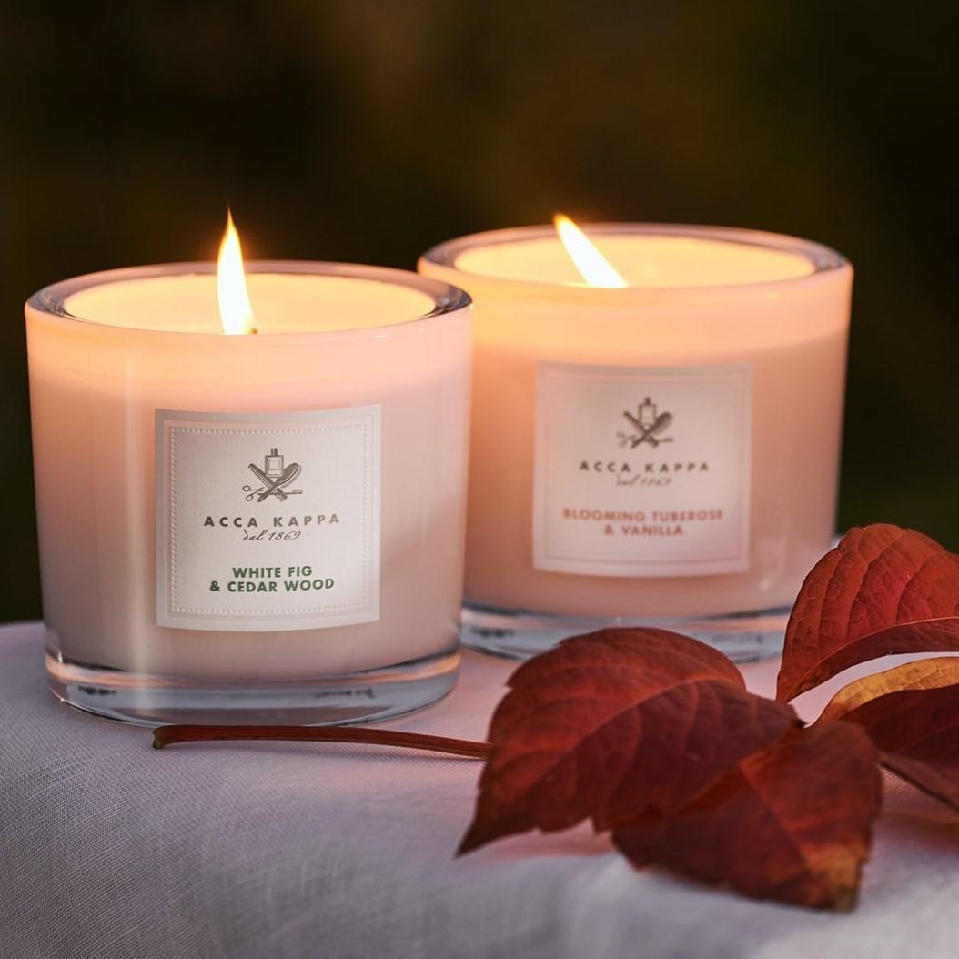 The Eucalyptus & Oakmoss Scented Candle by ACCA KAPPA