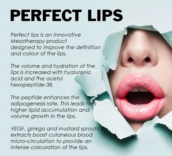 Image result for fusion meso perfect lips