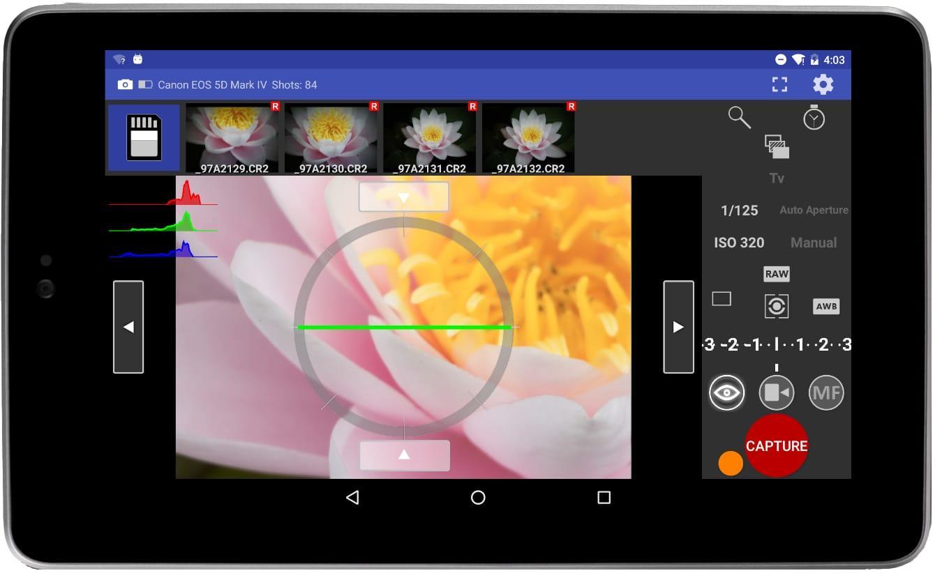 liveviewflower.jpg