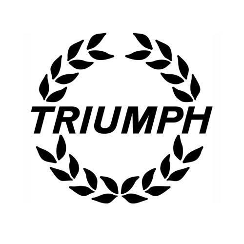 Repair Manual - Triumph