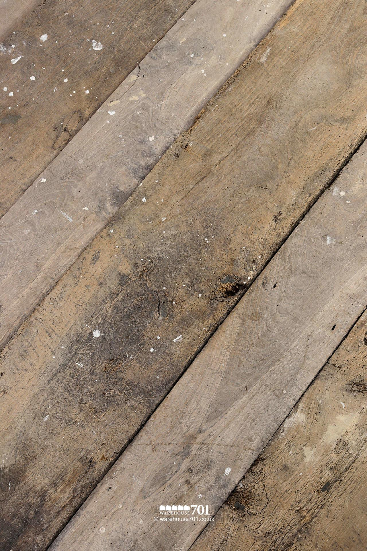 Beautiful Authentic 18th Century Elm Plank Flooring #2