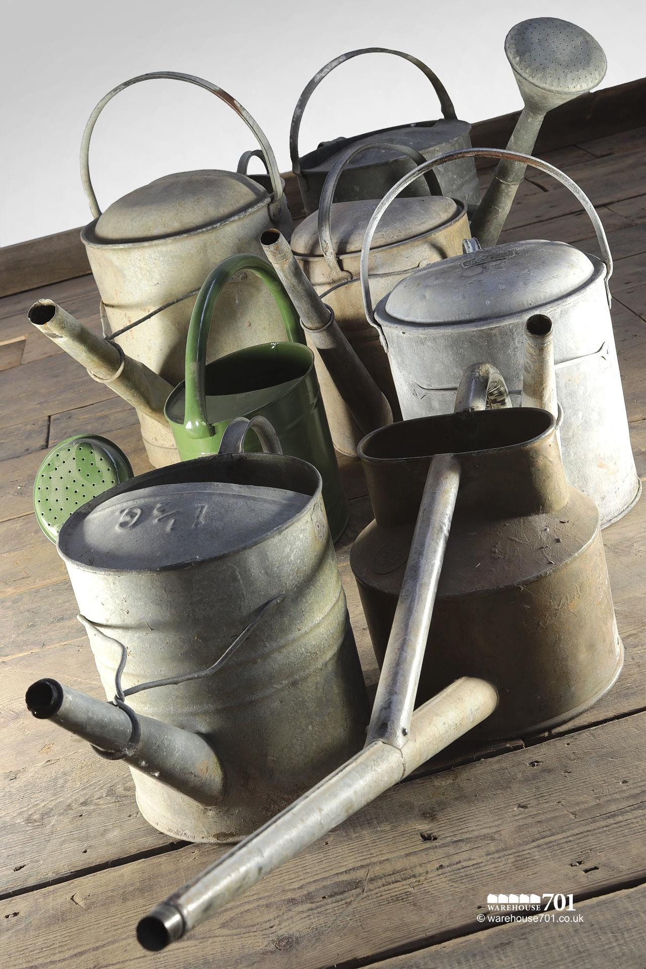 Assorted Vintage Watering Cans Some with Roses #4