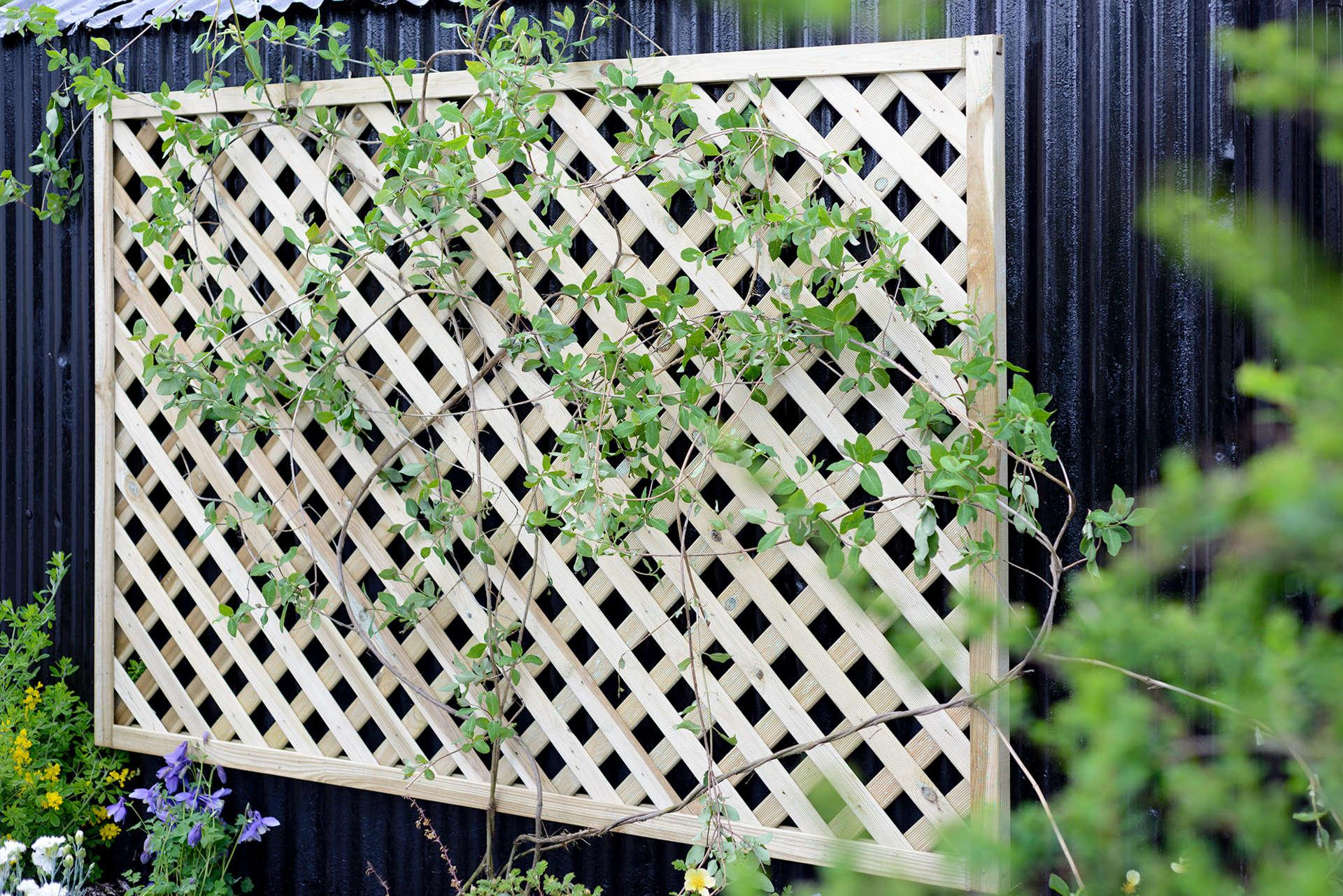 Lattice Fence Panel #2
