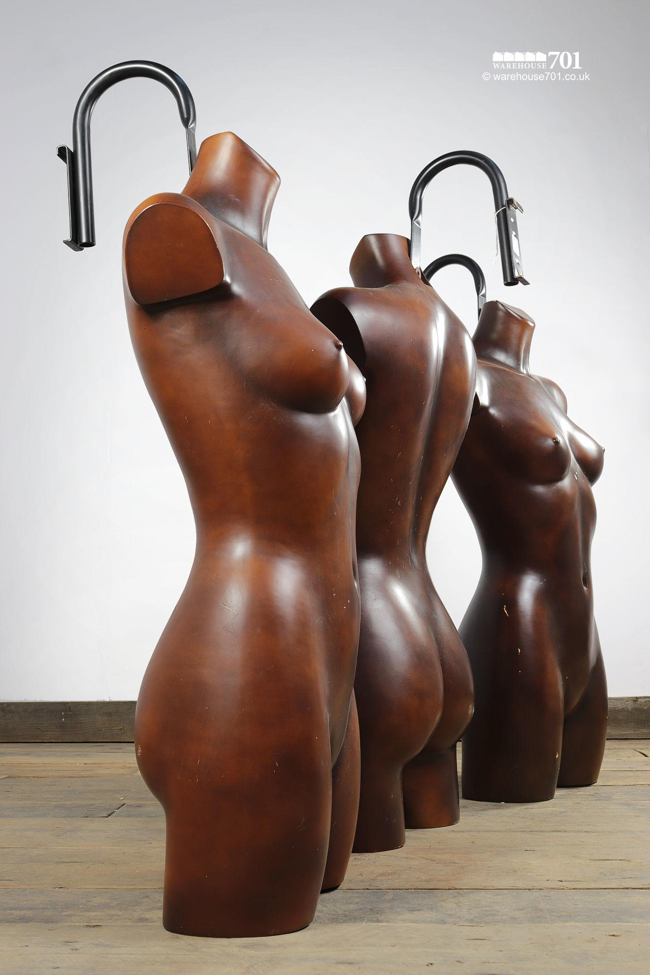 Reclaimed Dark Torso Wall Mounted Shop Mannequins #4