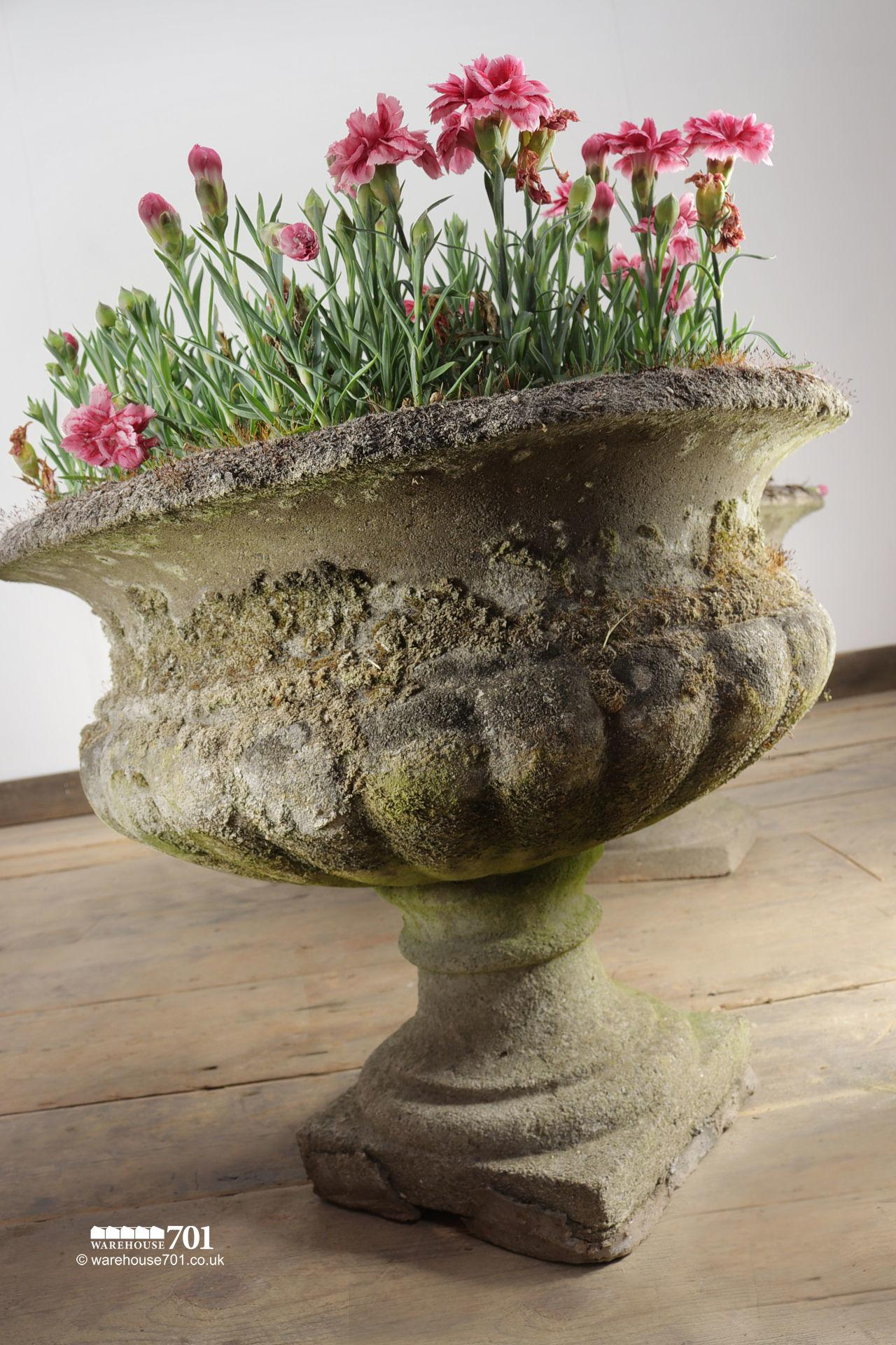 Salvaged Pair of Classic Gadrooned Composite Urns #4