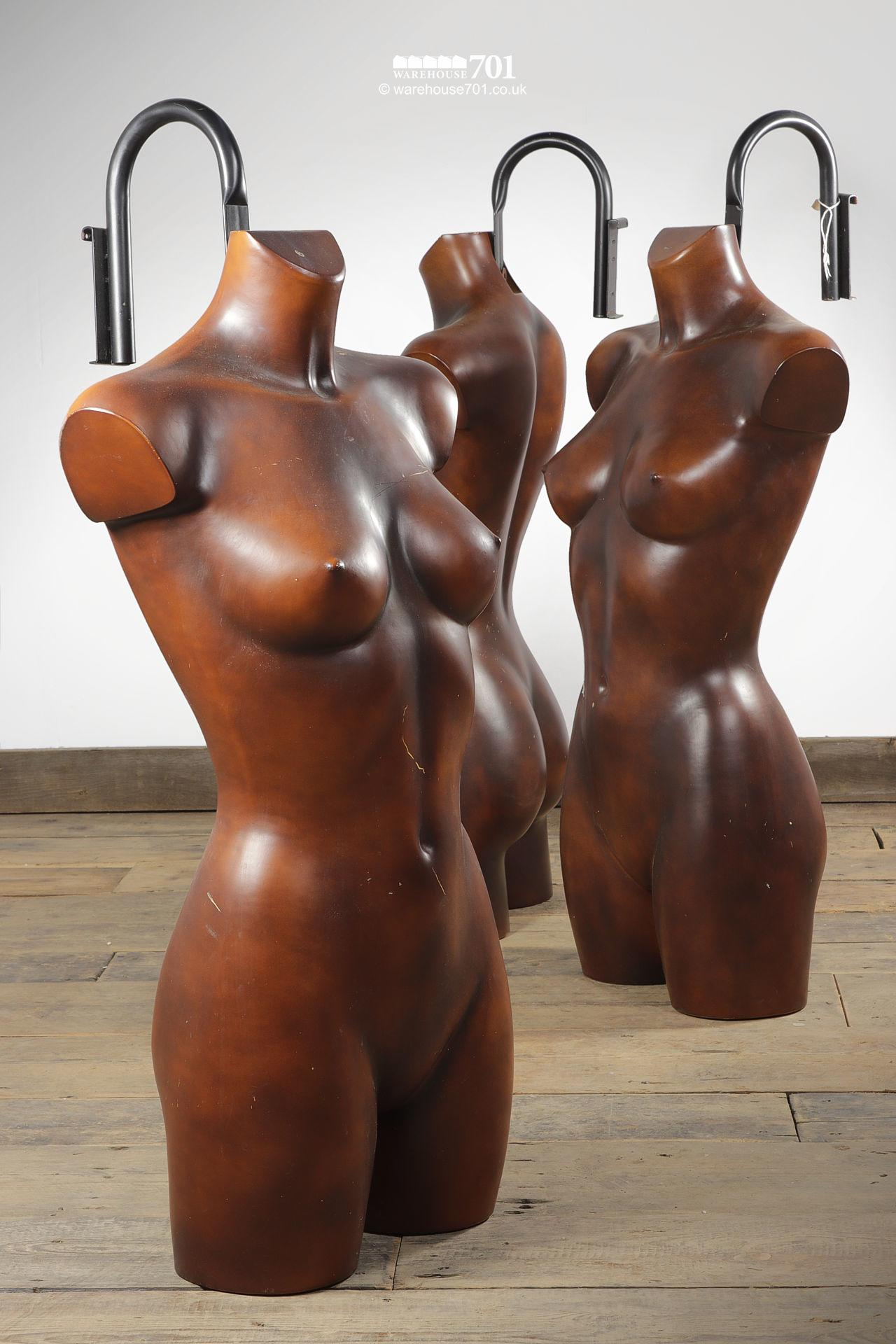 Reclaimed Dark Torso Wall Mounted Shop Mannequins #5