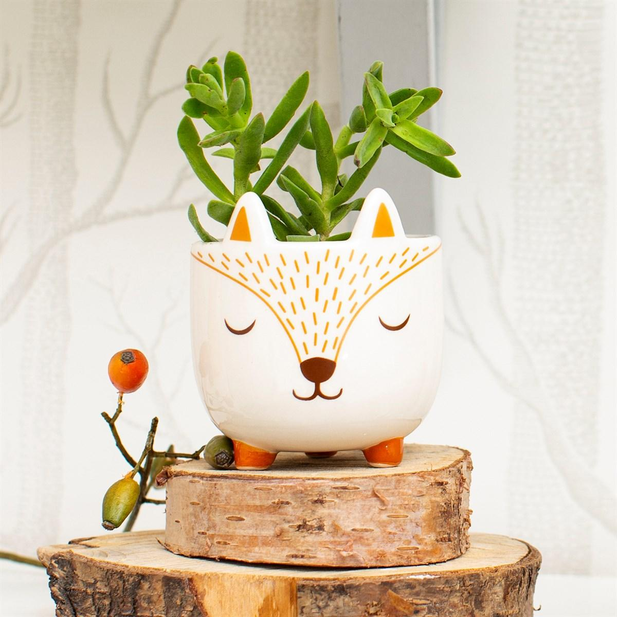 New Childrens Mini Woodland Fox Planter for the Nursery and Home