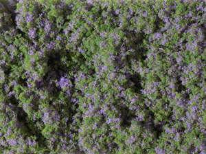 Auhagen 76931 Purple flower mat