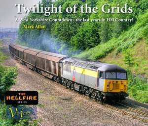 Twilight of the Grids - Book
