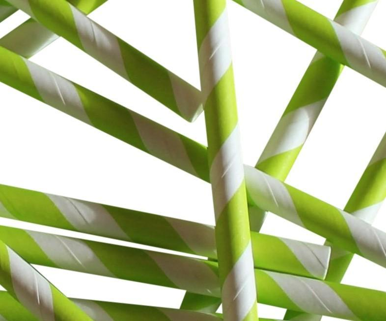 Green Striped Compostable Paper Straw Large Bore 230x10mm