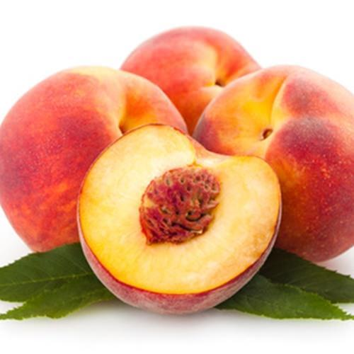 The Flavour Apprentice Nectarine Concentrate