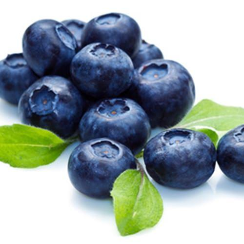 The Flavour Apprentice Blueberry Extra Concentrate