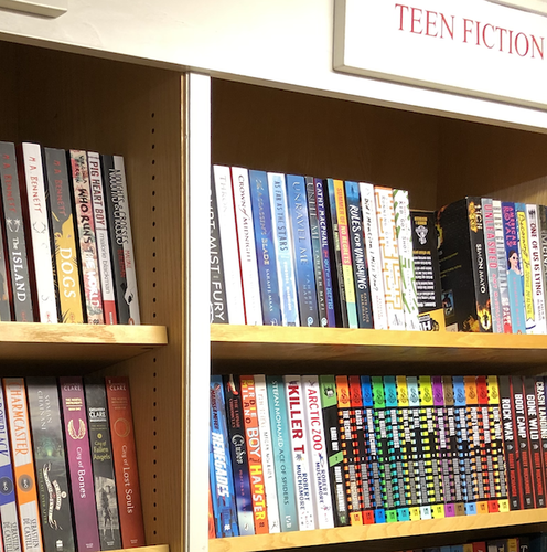 Teenage fiction books