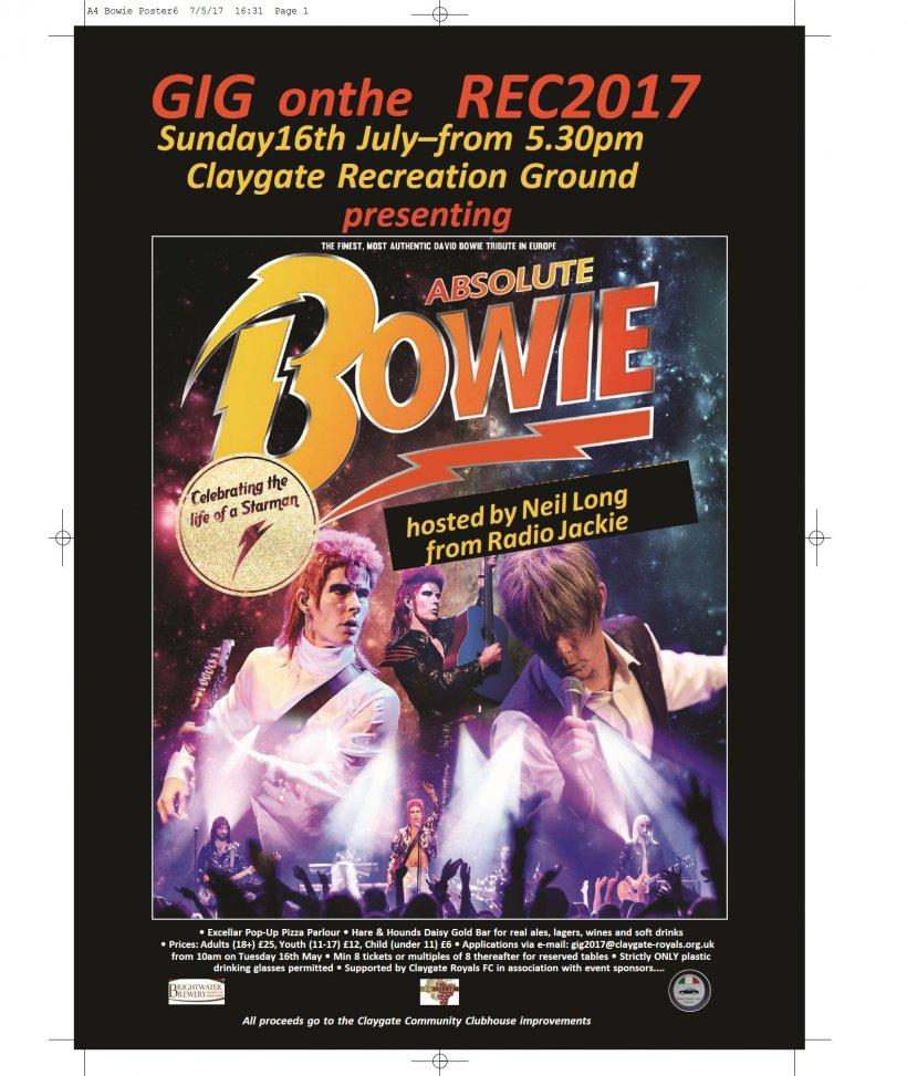 Claygate Gig on the Rec 2017 - David Bowie