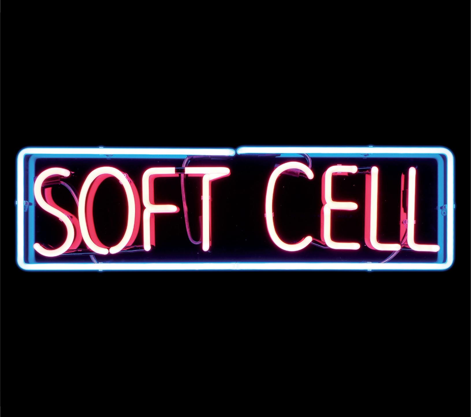 Soft Cell - To Show You I've Been There    - (Hardback Book)
