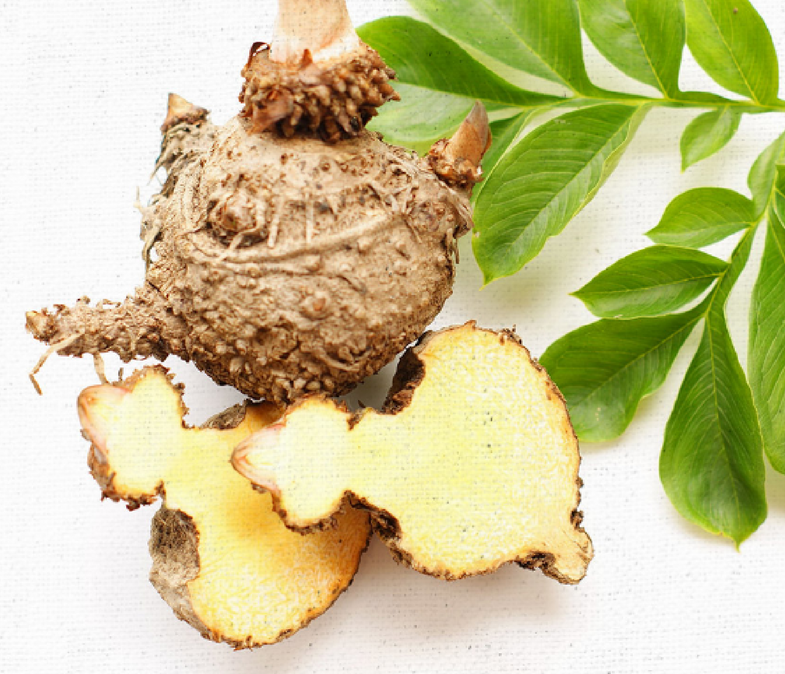 Glucomannan and Weight Loss