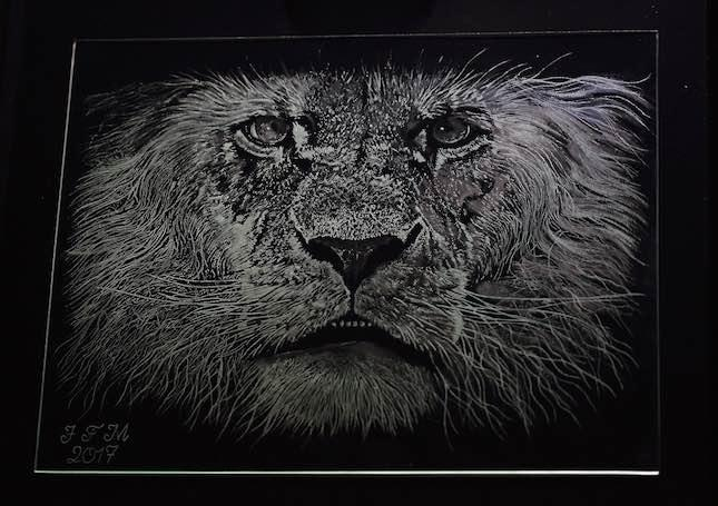 Glass Engraving of a lion by Jean-Francois Miralles.  He used a combination of tools from Eternal Tools: small diamond ball burrs, white arkansas stone burrs, eveflex polishers, grey rubber polishers and more