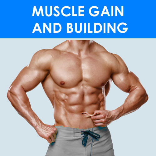 MUSCLE GAIN & BUILDING