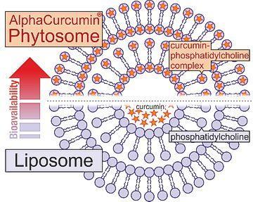 alphacurcumin-phytosome.jpg