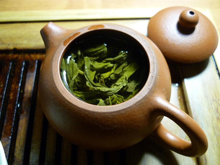 Fermented Green Tea Complex, an essential tool to have in your kit