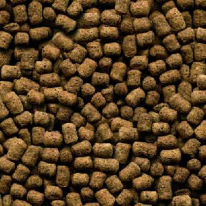 Kibbles Mill Dog Food Reviews