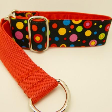 spotty dog collar, red, blue, green, yellow,