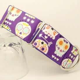 Greyhound house and martingale collars purple sugar skulls