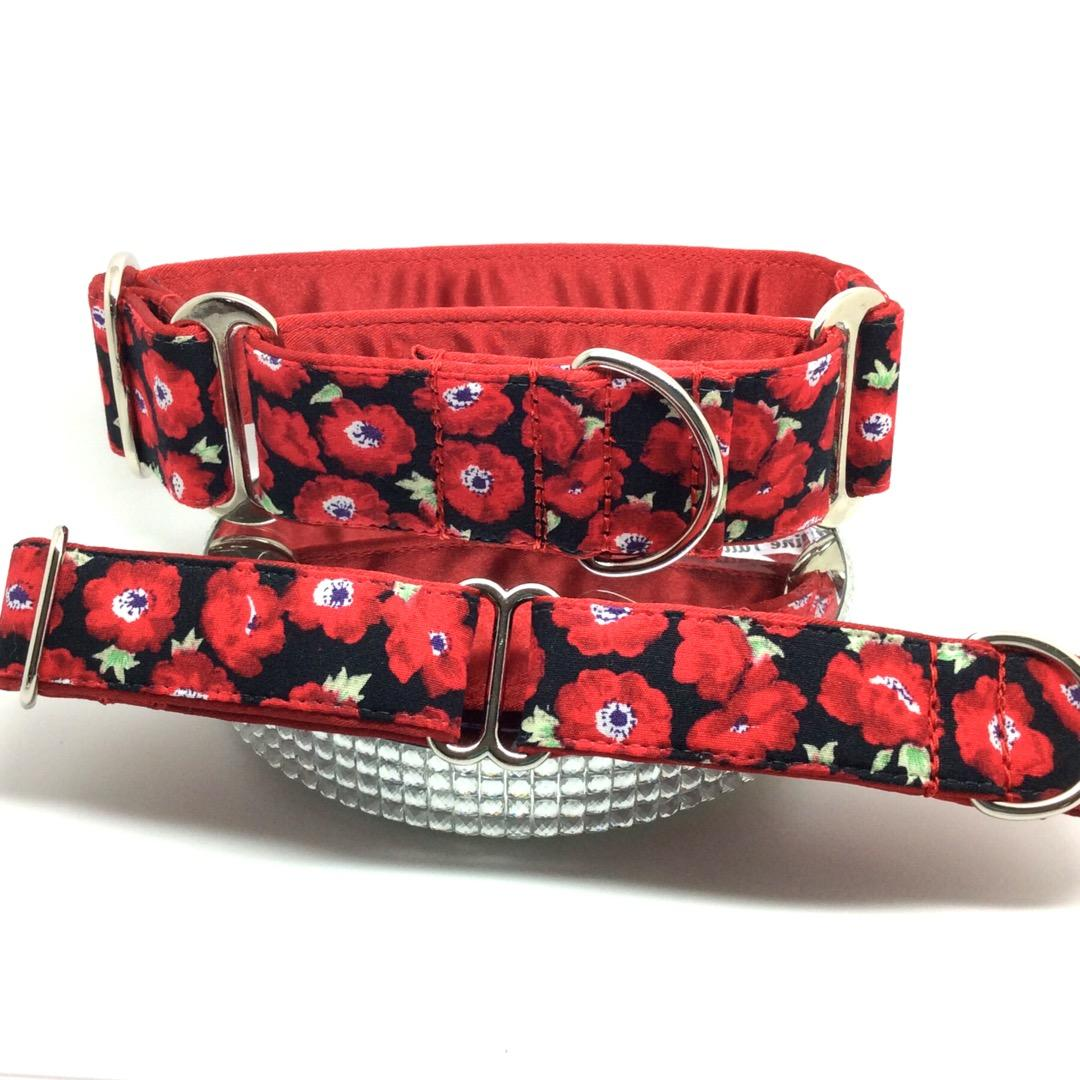 Red poppies matching Martingale and house collars