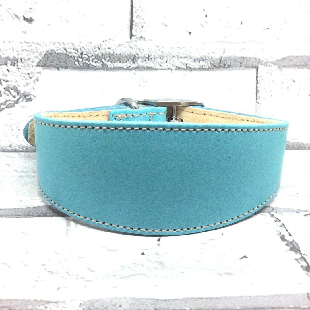 Blue leather whippet collar
