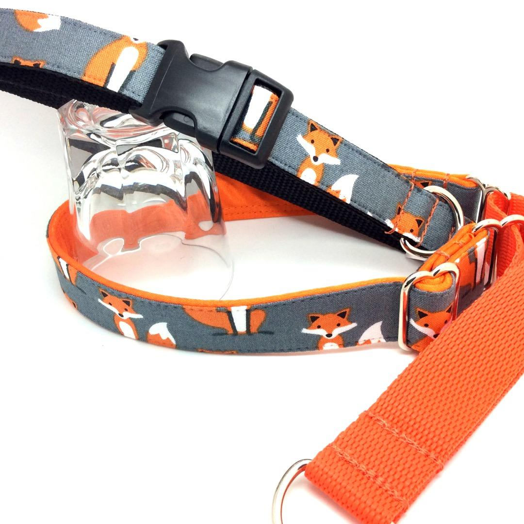 Fox dog collar, grey, orange,