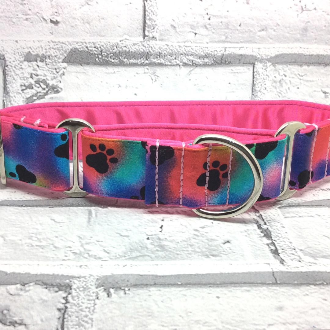 Rainbow paw prints, Greyhound collar, house and martingale